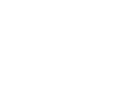 brand-logo2